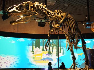 アロサウルス1.JPG