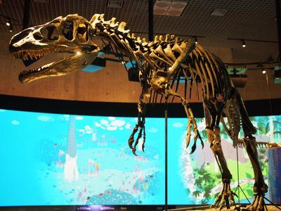 アロサウルス4.JPG
