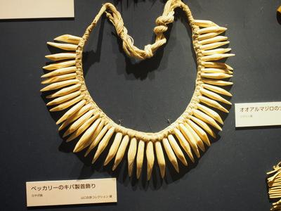 ベッカリーの牙首飾り.JPG