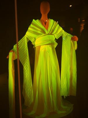 光る絹のドレス.JPG