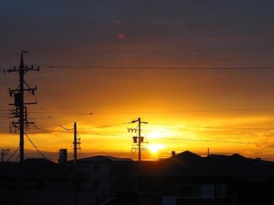 11月の日の出.JPG