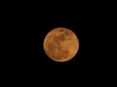 今宵の月.JPG