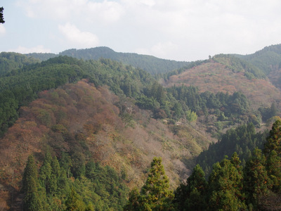 吉野山にて.JPG