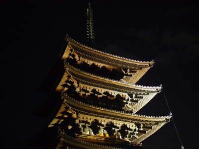 夜灯の興福寺.JPG