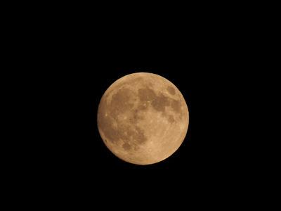 月見る月は多けれど.JPG