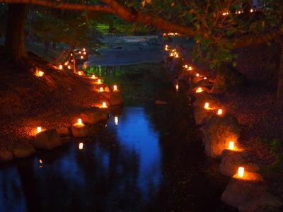 水辺の光.JPG