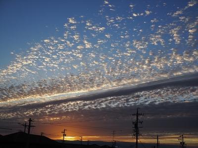 秋の朝.JPG