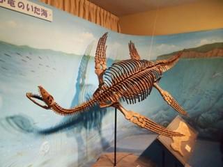 プレシオサウルス.JPG