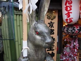 地主神社の兎.JPG