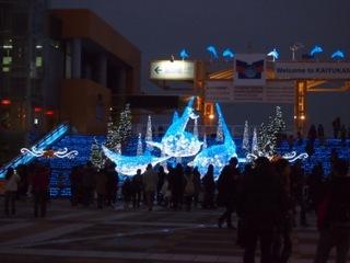 海遊館ライトアップ.JPG