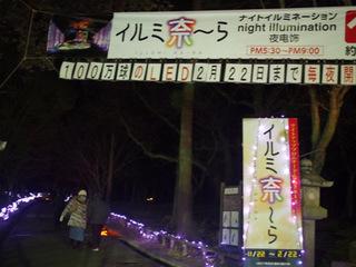 イルミ奈〜ら入口.JPG