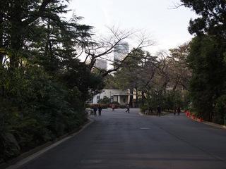 東京都庭園美術館庭園.JPG