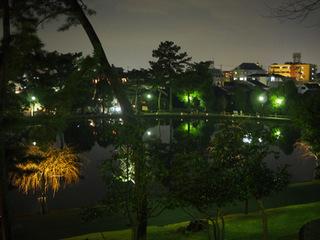 猿沢池夜景.JPG