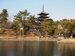 興福寺五重塔と猿沢池.JPG
